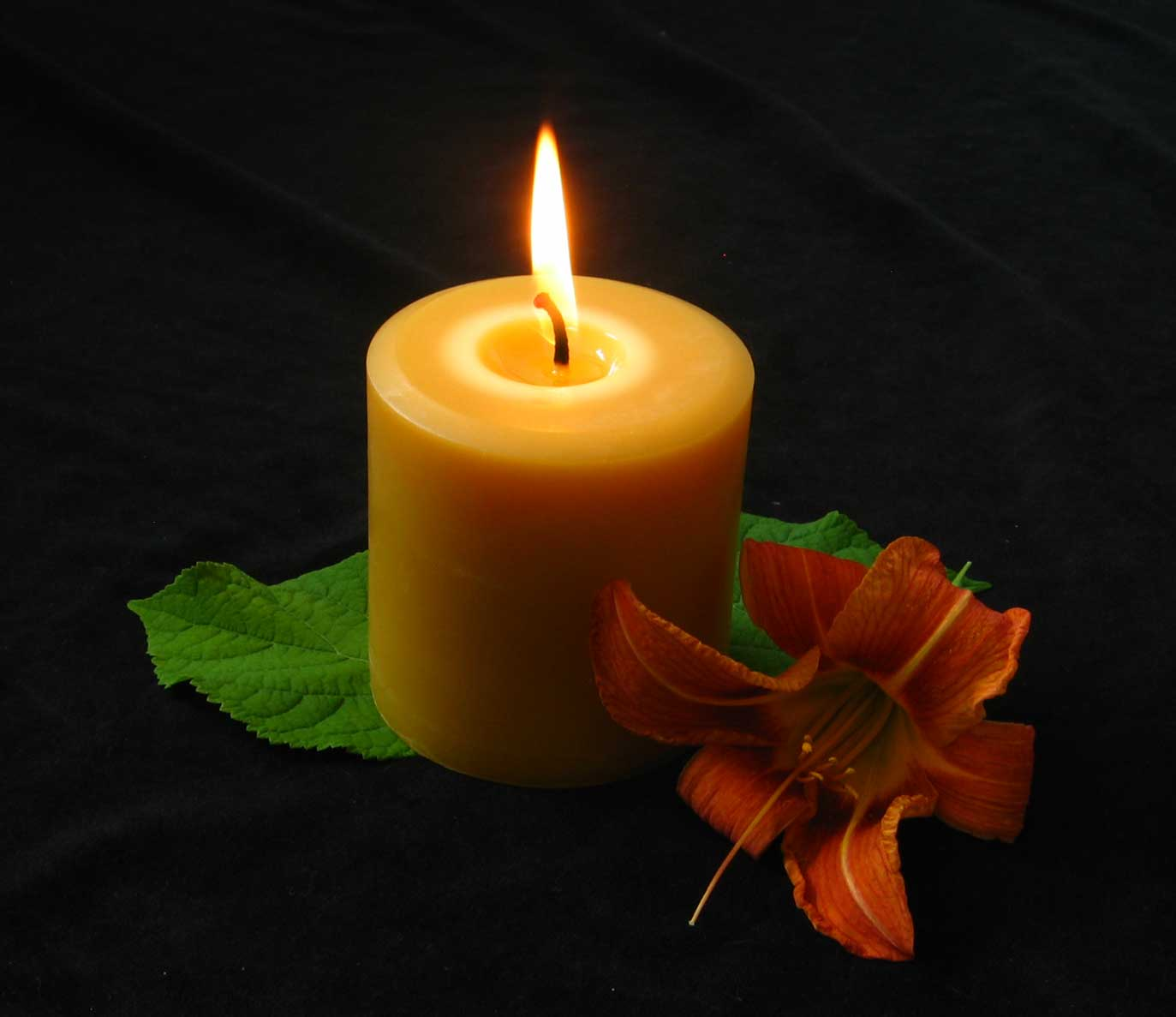 Honey Candles Blog | Your Online Source For All Things ...